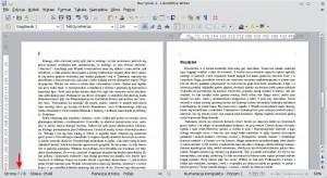 Tekst poskonfigurowaniu stylu akapitowego Nagłówek 1. Każdy nowy rozdział rozpoczyna się odkartki poprawej stronie, zaś pierwsza strona rozdziału pozbawiona jest numeru strony wgłówce.