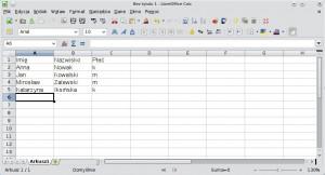 Arkusz kalkulacyjny zawierający przykładową bazę danych