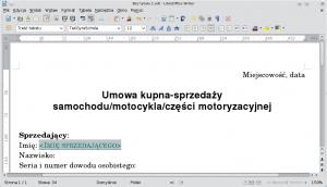 Dokument tekstowy powprowadzeniu Pola wypełniania
