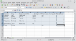 Arkusz kalkulacyjny. Baza danych z dwoma kolumnami tymczasowymi