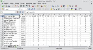 Okno arkusza kalkulacyjnego pokazujące przykładową bazę danych.